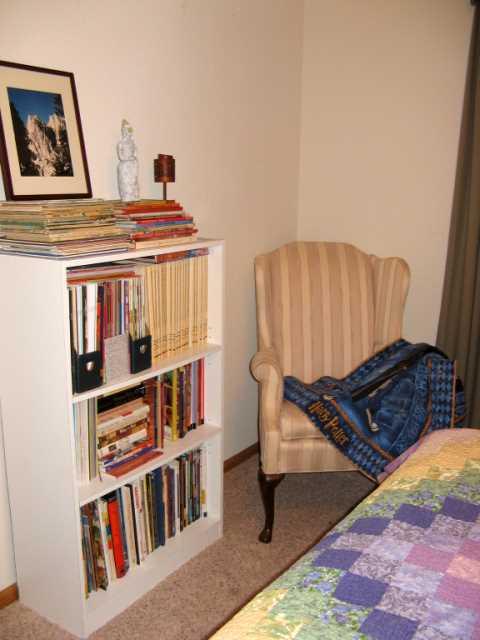 Bookshelves2_small