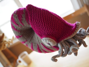 Knitted Nautilus (pattern and photo by Hansi Singh)