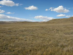 Soapstone Prairie Natural Area. I know it doesn't look like much, but my heart thrills at the sight of it.