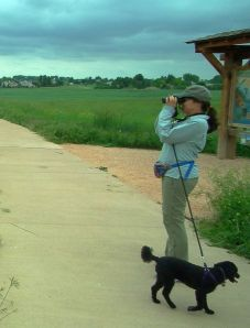 Dory and I are still walking (and birding) but not nearly as often as we were.