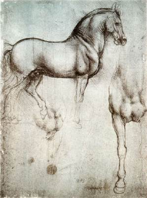 Studies of a horse, by Leonardo Da Vinci