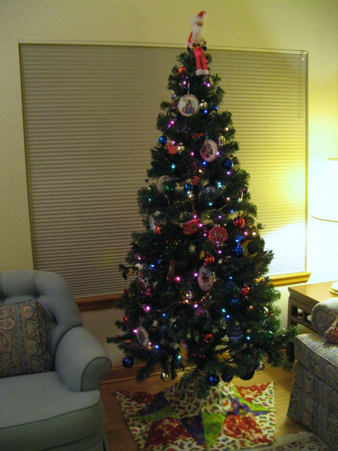 since we stayed home for the holidays this year i decorated for christmas now i am wondering when i should take the tree down - When Do You Take Down Your Christmas Tree