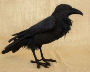Edgar the Raven, by Megan Nedds