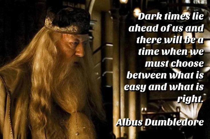DumbledoreDarkTimesQuote