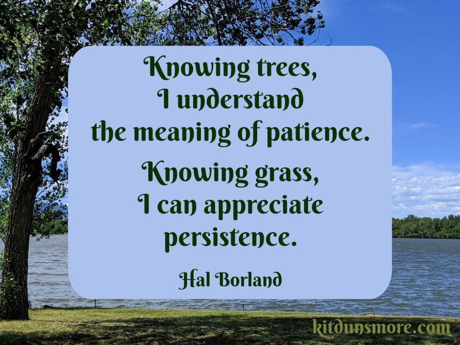 Knowing trees, I understand the meaning of patience. knowing grass, I can appreciate persistence. Hal Borland