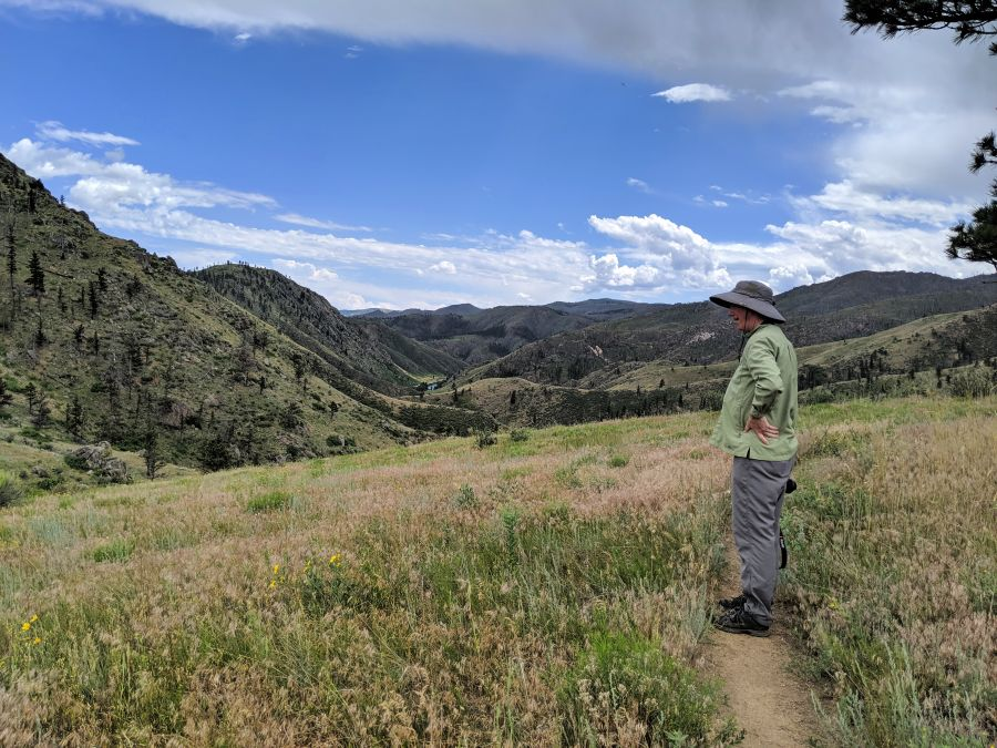 Foothills in summer, Black Powder Trail hiking trail with hiker; photo by Kit Dunsmore