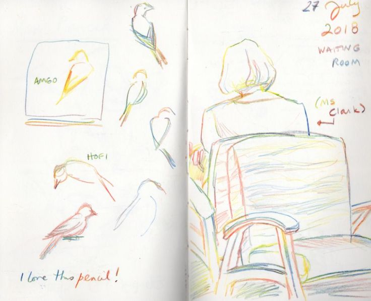 Sketches in primary colors. Gesture sketches of birds; the back of a seated woman in a waiting room. Drawings by Kit Dunsmore.